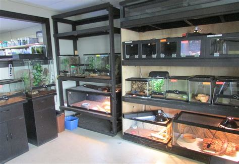Reptile Rooms by Products Services Prairie Aquatics And Exotics