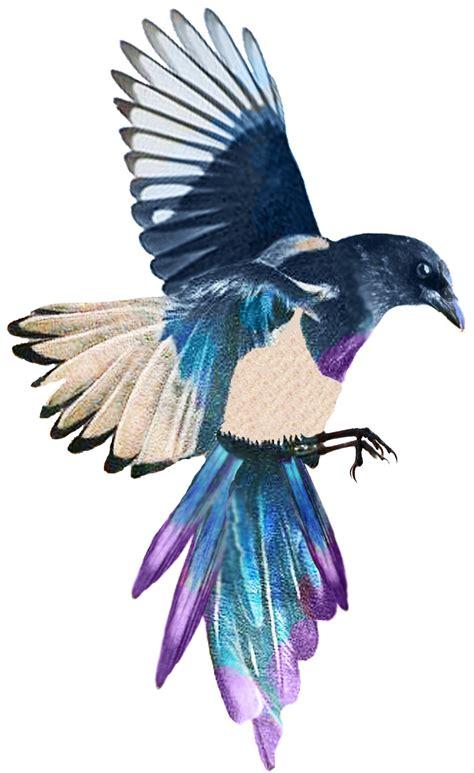 magpie tattoo design magpie da ara image