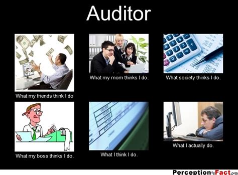 does my i auditor what think i do what i really do perception vs fact
