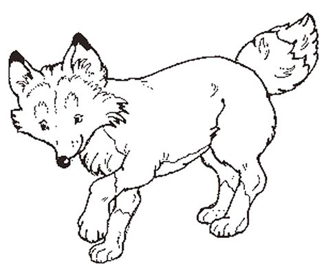 Fox Coloring Pictures Coloring Part 2 Fox Coloring Pages