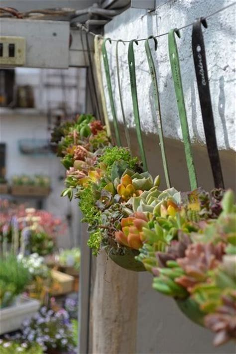 Upcycled Garden Ideas 25 Best Ideas About Upcycled Garden On Recycled Garden Recycled Garden Crafts And