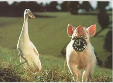 Babe: A Pig's Fan's Shrine In Time Movie Clock