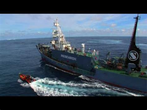 whale wars boats whale wars best of series 1 boarding a japanese whaler