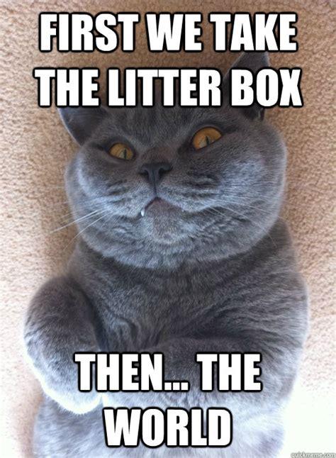 Evil Cat Meme - first we take the litter box then the world evil cat