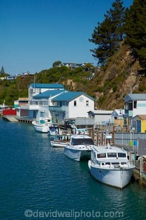 house boats nz mana boatsheds porirua harbour wellington north island