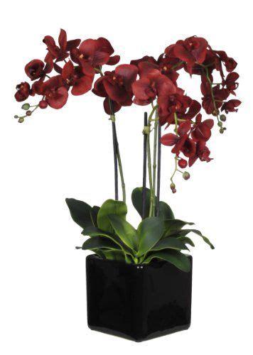 house of silk flowers artificial stem phalaenopsis