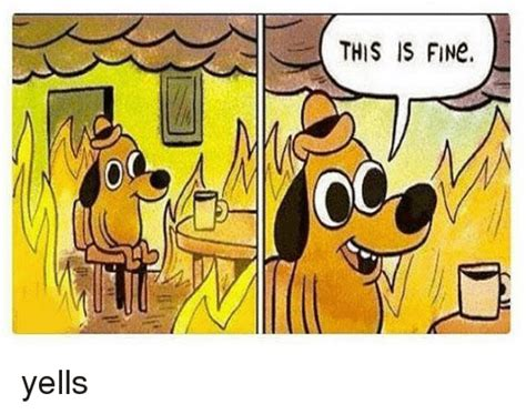 This Is Meme - this is fine yells meme on sizzle