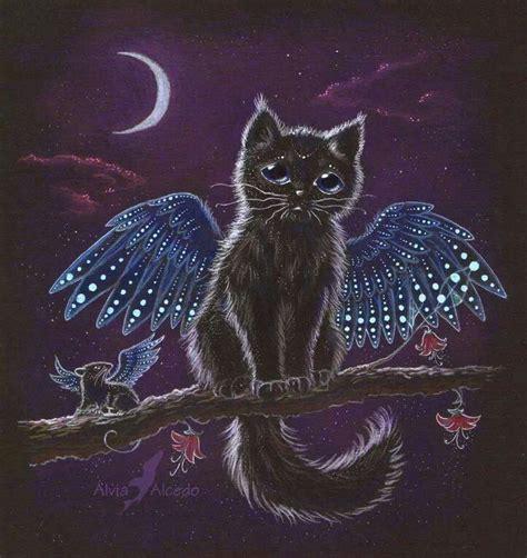 images  tressym  pinterest cats carmen