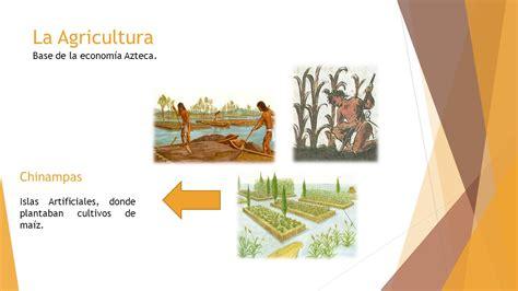 imagenes economia azteca la econom 237 a azteca alimentos habitaci 243 n viviendas