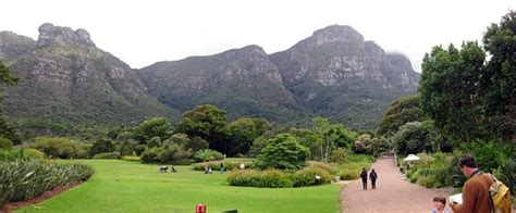 Kirstenbosch National Botanical Garden Cape Town South Botanical Gardens Cape Town