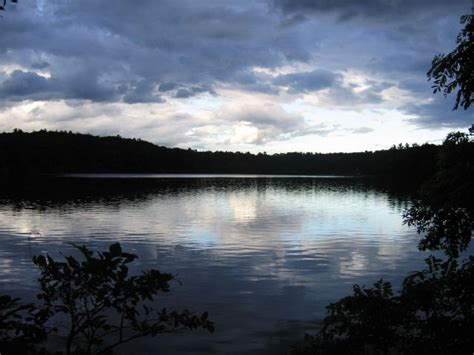 walden pond pdf contact back to walden