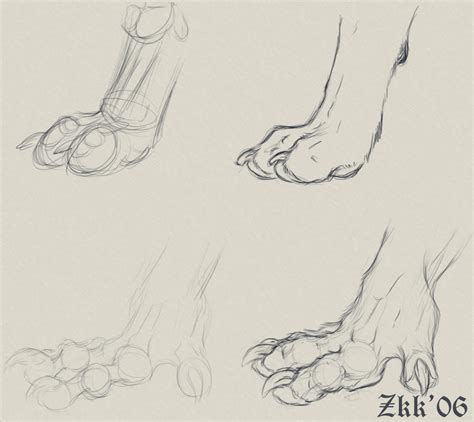 werewolf paw tutorial paws n hands by yellow eyes on deviantart