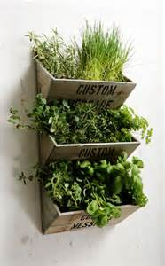 Wall Mounted Herb Garden by Personalised Large Wall Mounted Herb Planter Kit 163 29 99