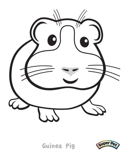 guinea pig coloring pages free printable guinea pig coloring pages coloring home