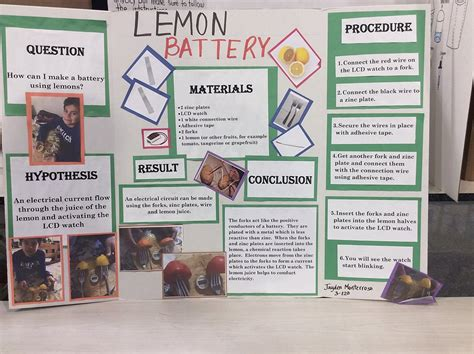 powered by pligg science fair ideas for 6th graders ps99 science fair projects