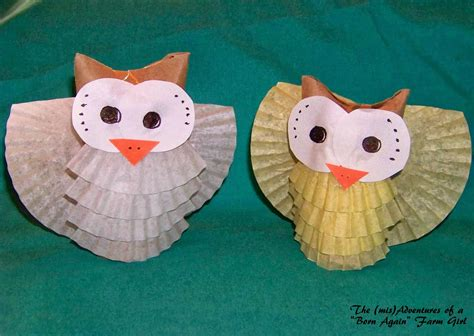 Toilet Paper Owl Craft - 54 craft ideas for to make