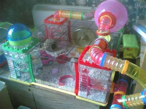 hamster bedroom a hamster s home is his castle food drink photography and other things
