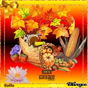im 225 genes de fel 237 z acci 243 n de gracias y happy thanksgiving day informaci 243 n im 225 genes