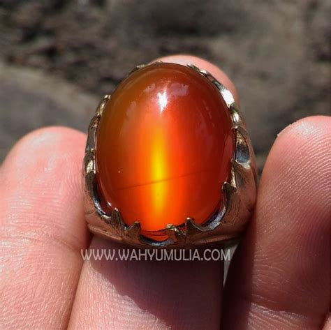 Batu Raflesia batu cincin raflesia mata kucing bengkulu kode 401