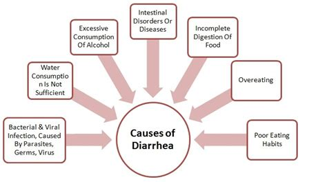 Chronic Soft Stool In Adults by Diarrhea Causes Symptoms And Treatment Health Care