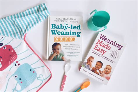 weaning made easy all b0065gf4ok weaning meal plan baby led weaning hello deborah