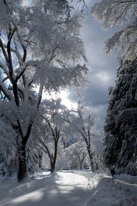 Glen Chemin 233 E D Beautiful Snow Winter