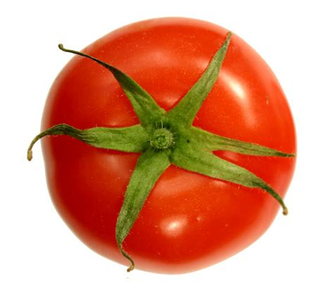 The Tomato by File Tomato Top Png