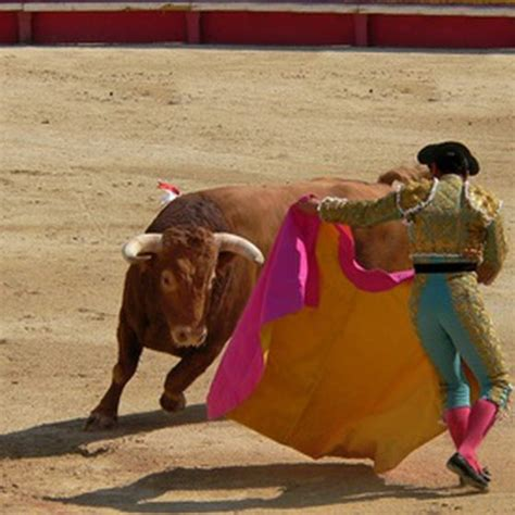 information on the culture food entertainment of spain