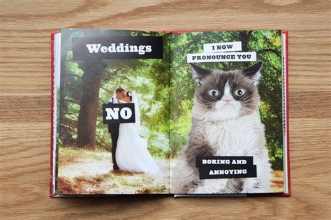 no pictures book chronicle books grumpy cat no it all everything you