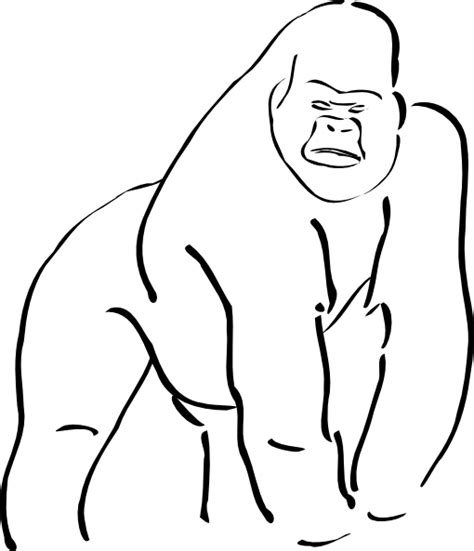 gorilla outline coloring page gorilla outline clip art at clker com vector clip art
