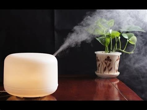 top   humidifiers  large rooms youtube