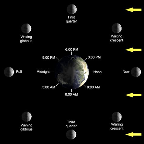 lunar phases diagram lunar phase and friendship