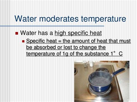 biology 2 2 properties of water powerpoint and guided notes tpt