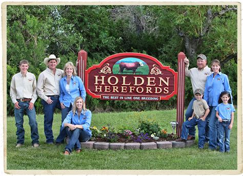 holden herefords history line one horned cattle since 1947