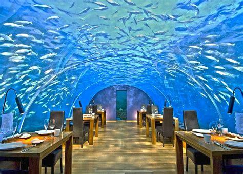 maldives ithaa underwater restaurant overwater villa top 15 unusual restaurants in the world sagmart