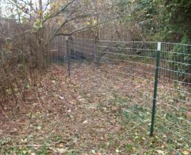 Cheap Cowhide Landscaping Fascinating Cheap Fencing For Landscaping