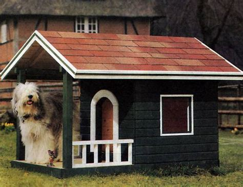 dog house windows 30 dog house decoration ideas bright accents for backyard designs