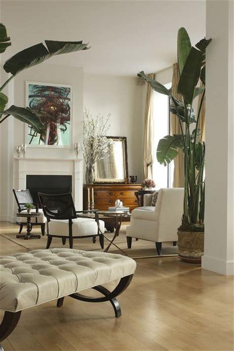living room plant koloniaal interieur interieur insider