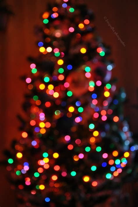christmas tree bokeh by fotografka on deviantart