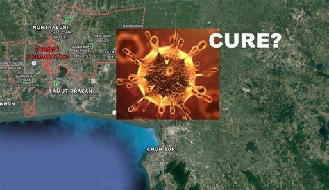 thai doctors claim cured woman  coronavirus   hours