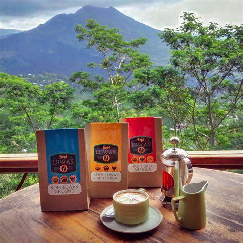 Kopi Bali Kintamani By Rumacoffee kintamani coffee