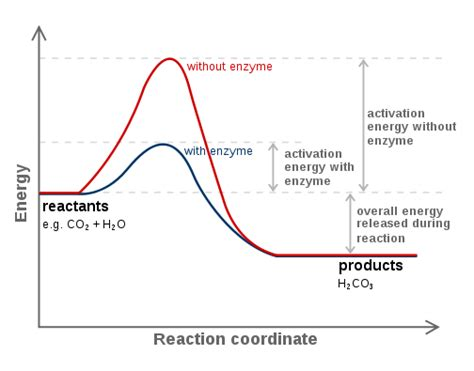 activation energy chemistry britannica com