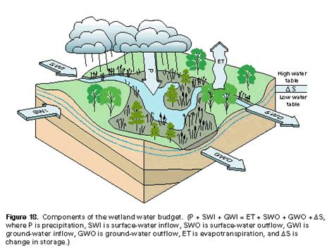 Biophysical Landscape Definition History Of Wetlands In The Conterminous United States