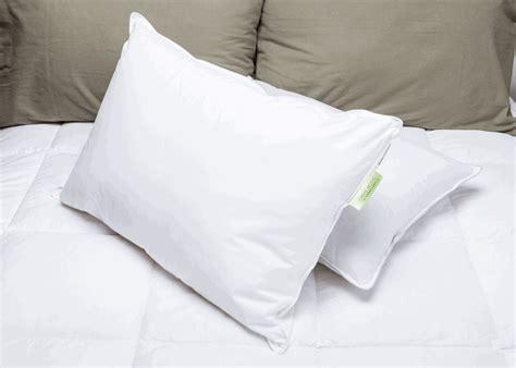 comfort inn pillows pillows com