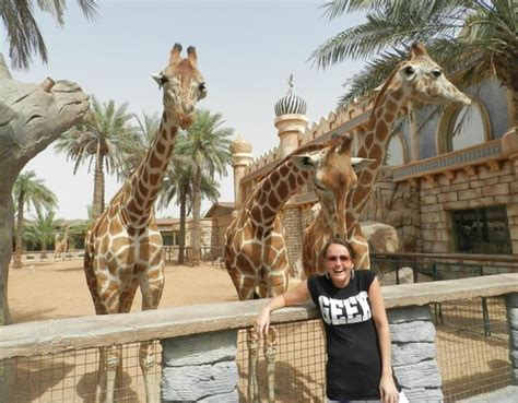 emirates zoo ticket offers greedy monkeys picture of emirates park zoo abu dhabi