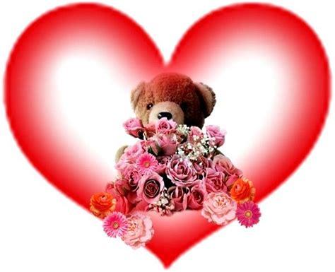 imagenes para enamorar de ositos imagenes peluches de amor png imagenes para enamorar