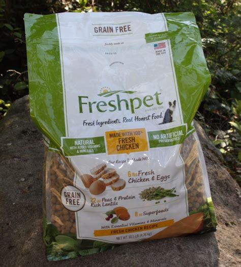 fresh pet food freshpet pet food available at target all things target