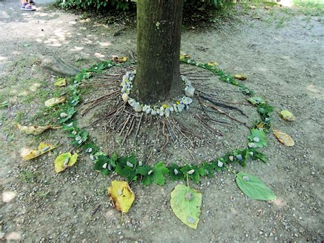 pattern within nature from nature within nature inspired by goldsworthy june
