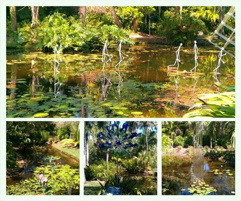 Vero Botanical Gardens 17 Best Images About Eco Tourism On Pinterest Spotlight Sea Turtles And Vero Florida