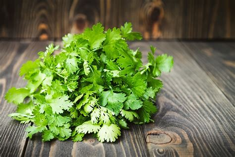 Cilantro Tea Detox by How To Make Your Look Younger 5 Important Foods